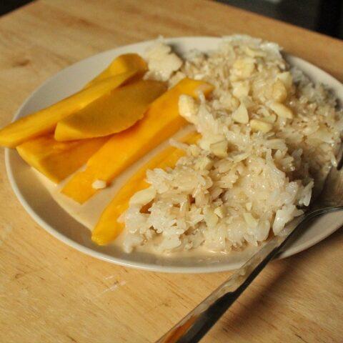 Mango Sticky Rice Dessert (Low Histamine)
